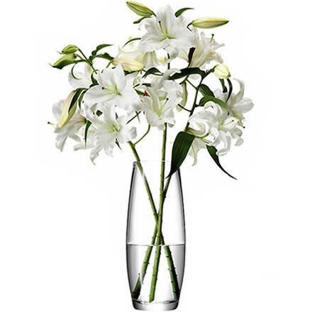 LSA Flower Grand Stem Vase 41cm (Single) Image